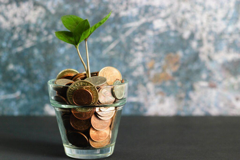 Ein Glas ist randvoll mit Geldmünzen gefüllt. Aus den Münzen heraus wächst ein zartes Pflänzchen.